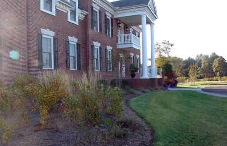 Landscaping in front of home