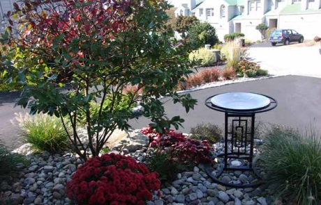 Rock Garden and Landscaping