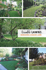 Livable Lawns-thumb