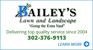 Bailey's Lawn and Landscape 'Going the Extra Yard'